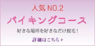 脱毛メニュー No.2