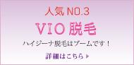 脱毛メニュー No.3