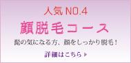脱毛メニュー No.4